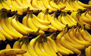 Bananes. Photo gracieusement fournie par Steve Hopson, www.stevehopson.com.