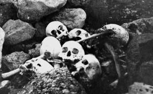 Les crânes de membres d'équipage de l'expédition Franklin, découverts et enterrés en 1945 par William Skinner et Paddy Gibson, à l'île King William, aux T.N.-O. (dorénavant au Nunavut), figurent dans cette photo des collections des Archives nationales du Canada. [LA PRESSE CANADIENNE/Archives nationales du Canada]